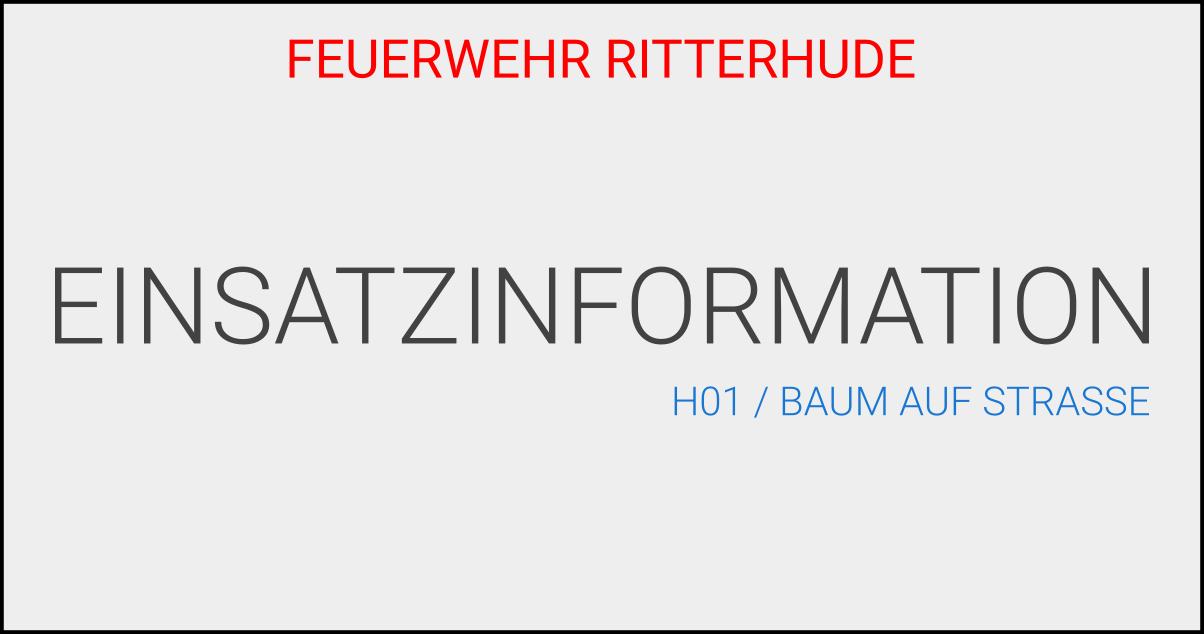 H01/BaumAufStrasse